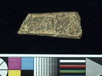 Ivory slab fragment with hatches #MA136