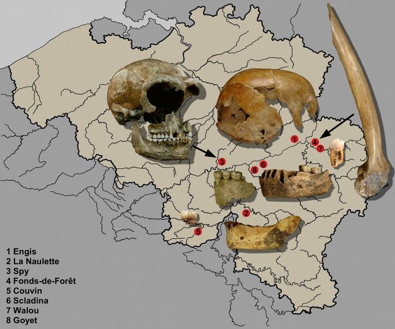 carteBelgique-neandertal.jpg