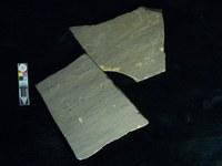 Engraved ibex on a broken psammite slab.