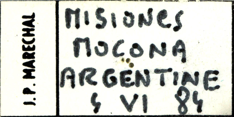 Inca besckii label 24177.jpg