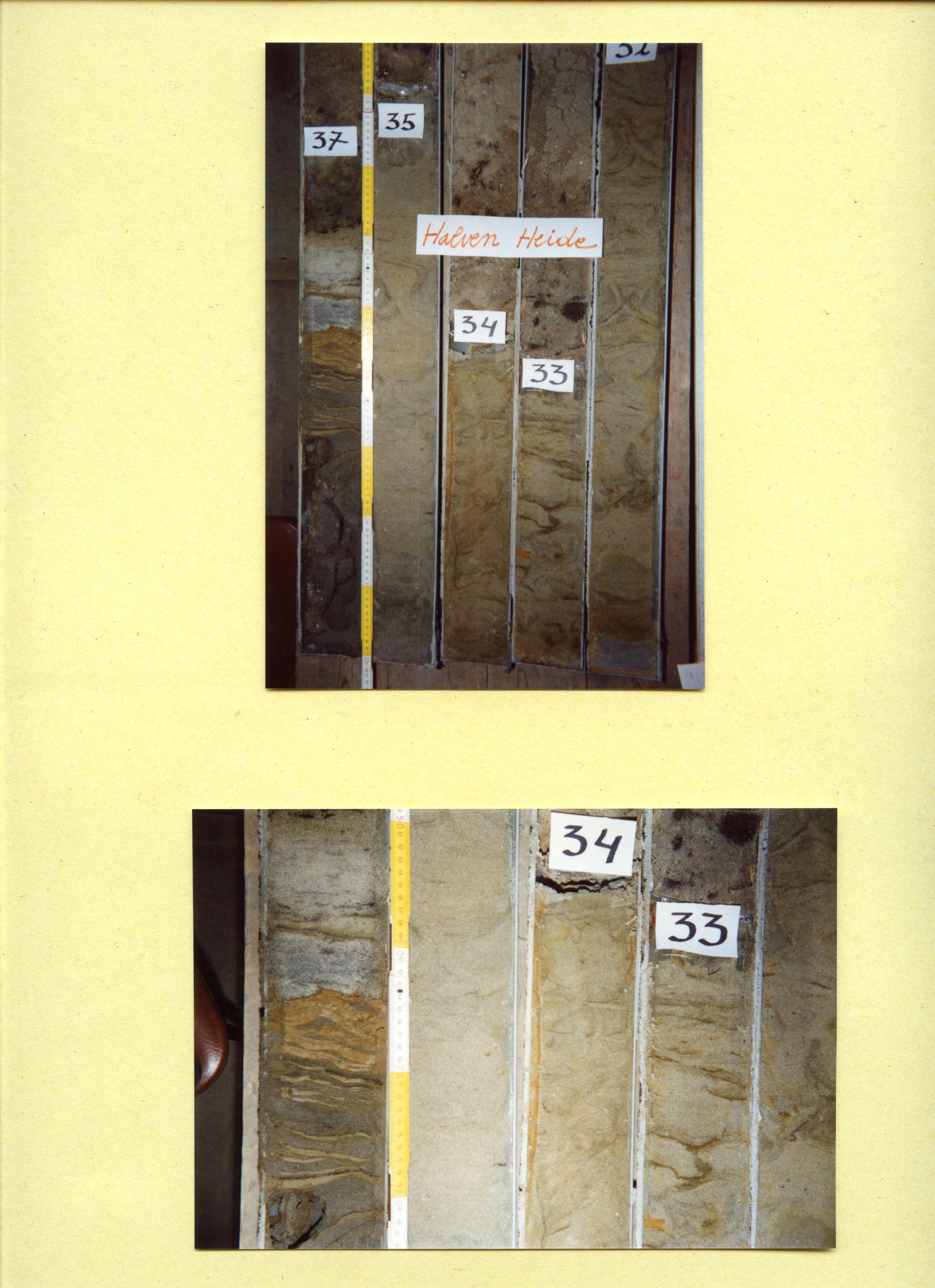 008w0158-halven-heide-nr-158-008.jpg