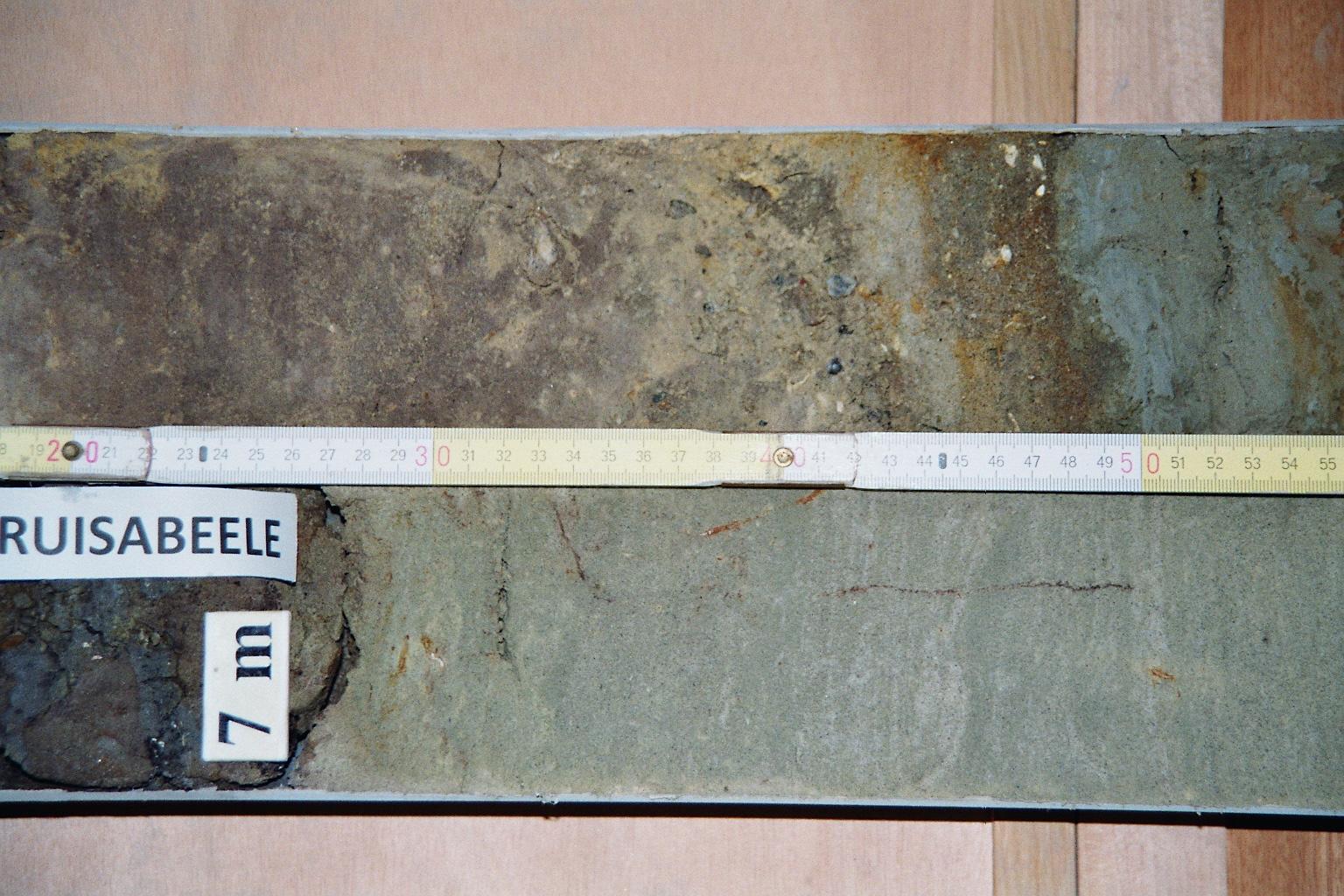 051w0136-kruisabeele-large12.jpg