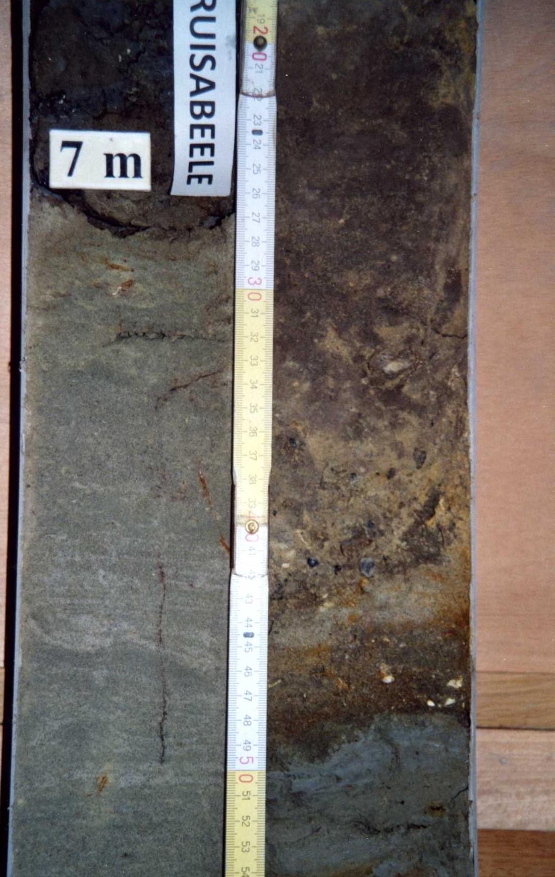 051w0137-schaap-kruisabeele-lampernisse_page_4.jpg
