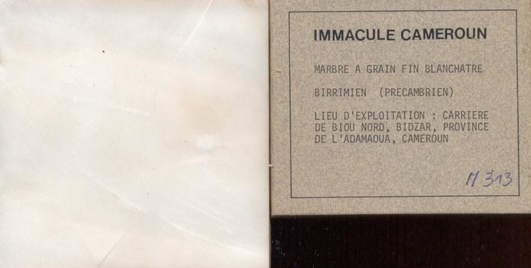 Immacule Cameroun M313
