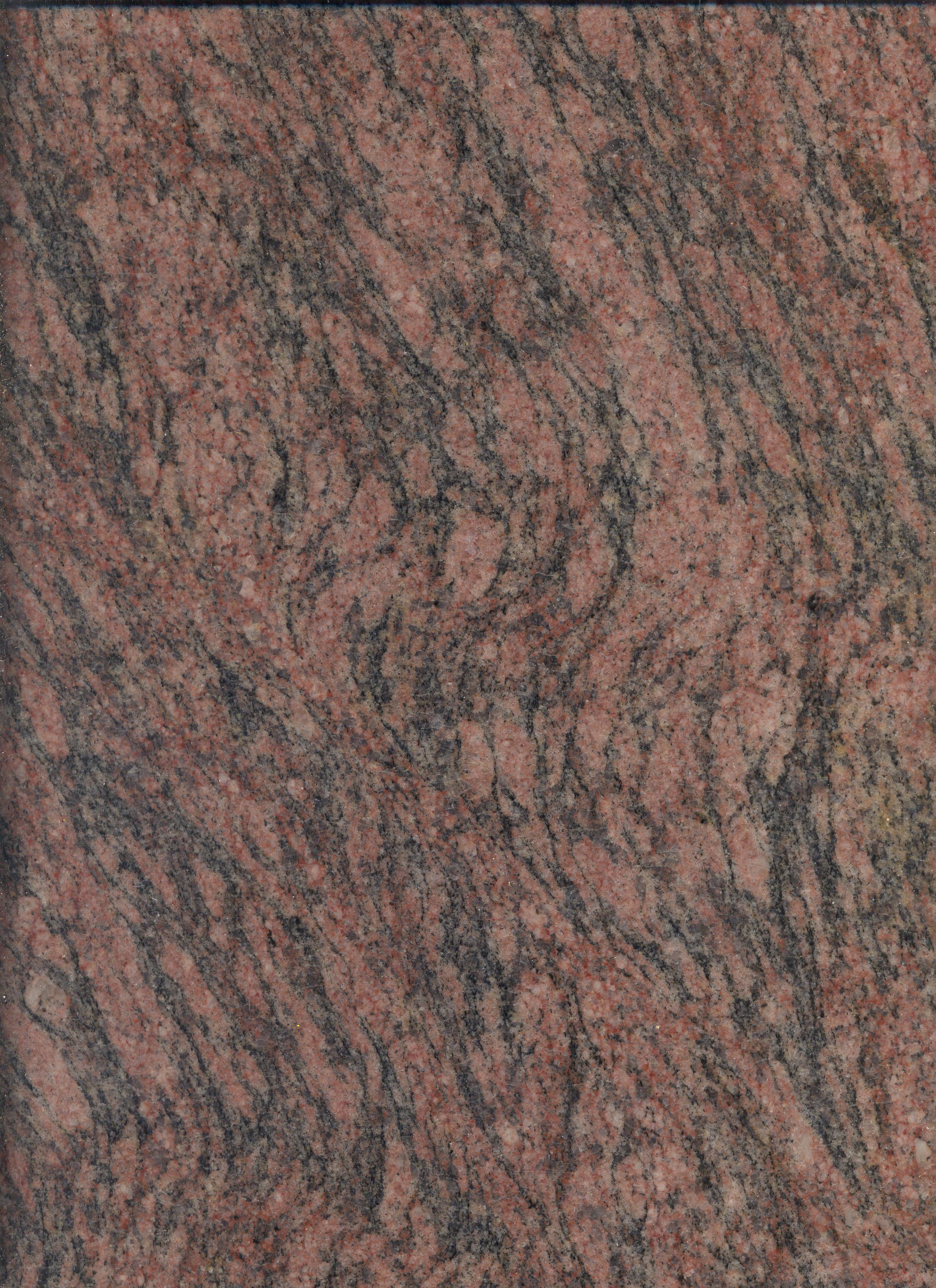 Paraiso - Tigrato M331