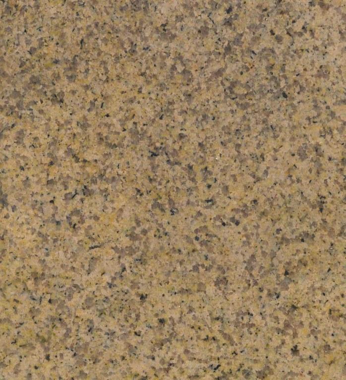 Yellow Rock front wet B8003