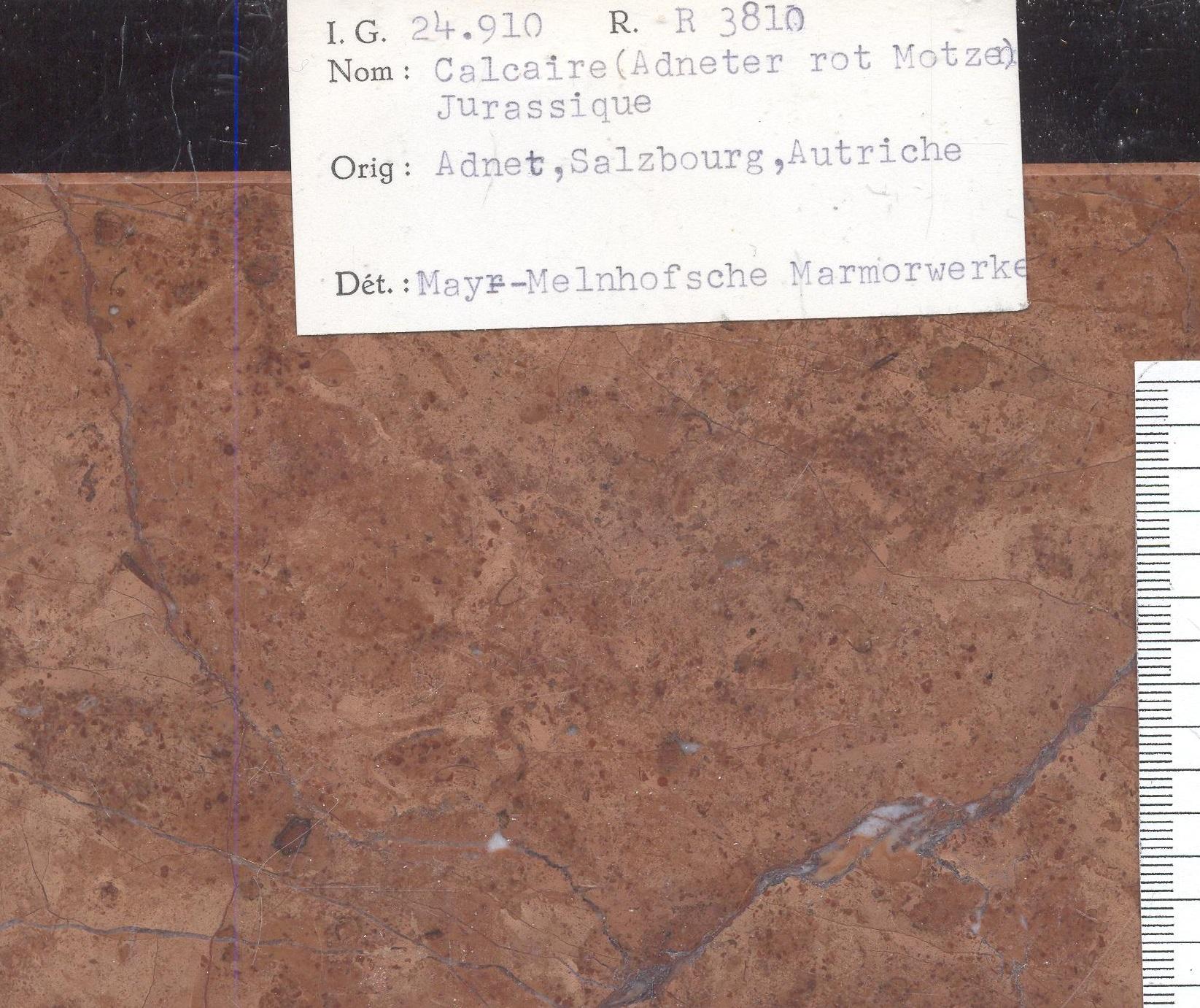 Adneter rot motzen RR3810
