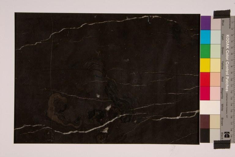 Noir de Saint Jean - Coquillé noir à veine B05