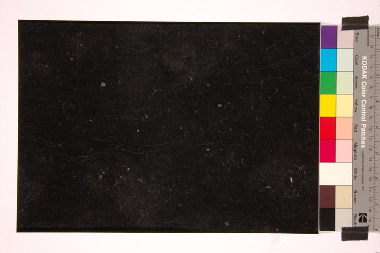 Noir de Denée C02