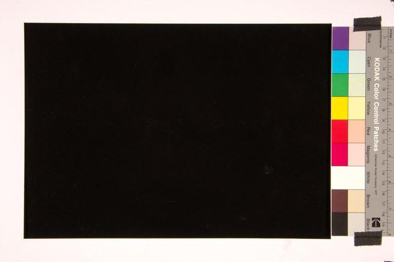 Noir de Golzinne C36