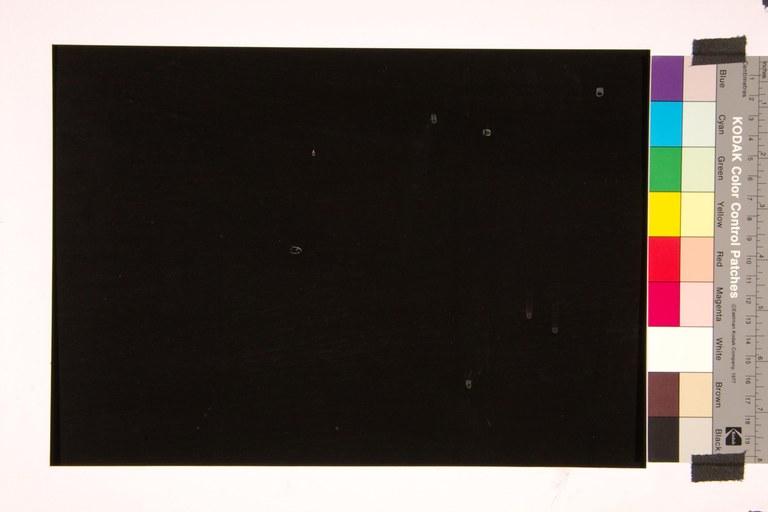 Noir de Golzinne C37