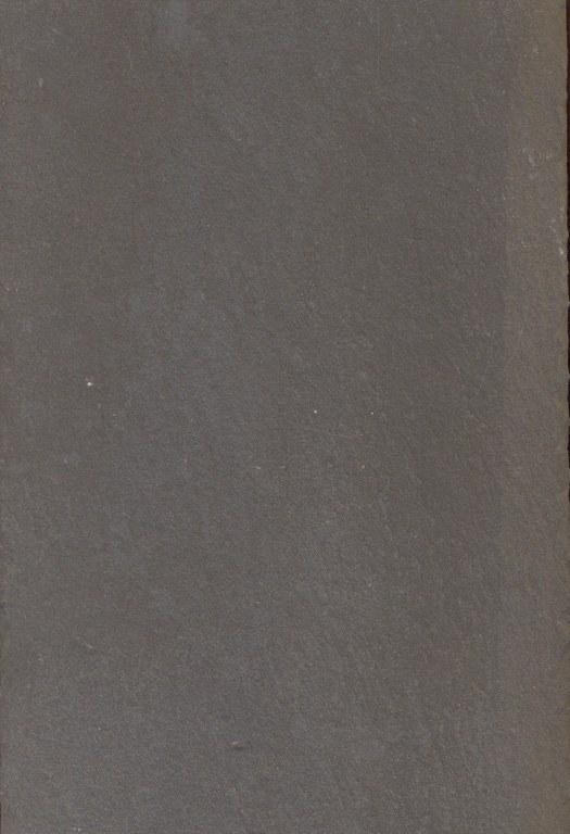 Leisteen E135