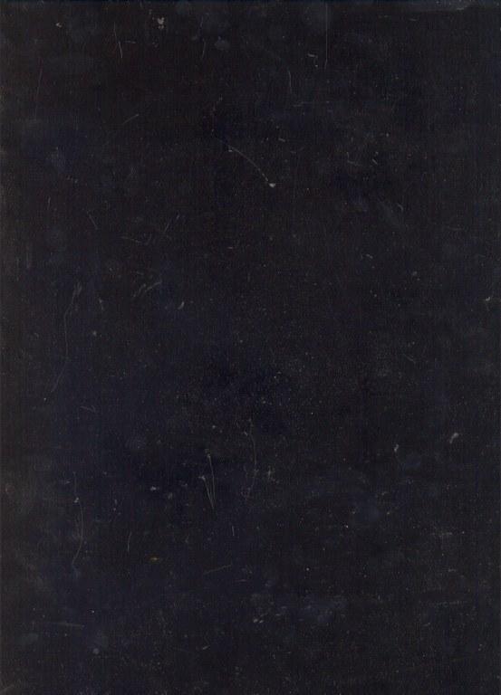 Noir de Mazy E409