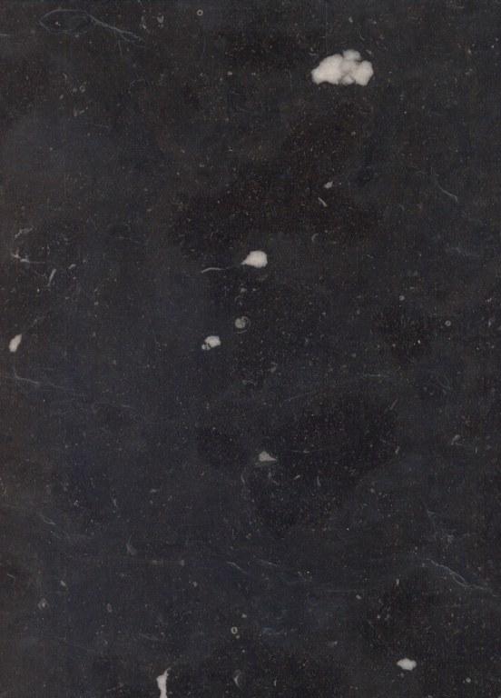 Noir de Denée E412