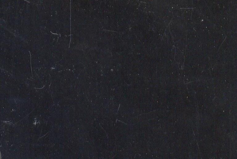 Noir de Golzinne M1070