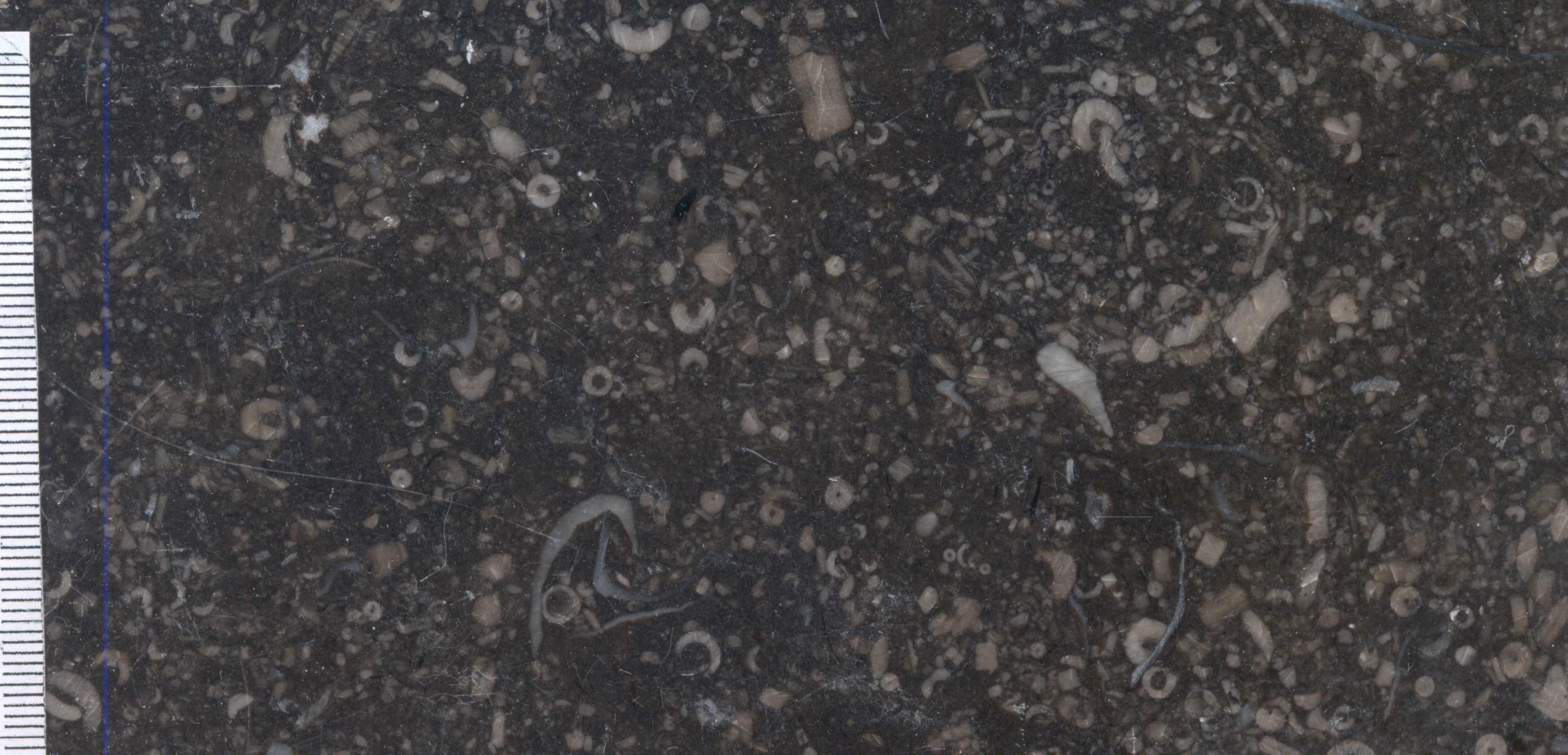 Petit Granit Sprimont M1433
