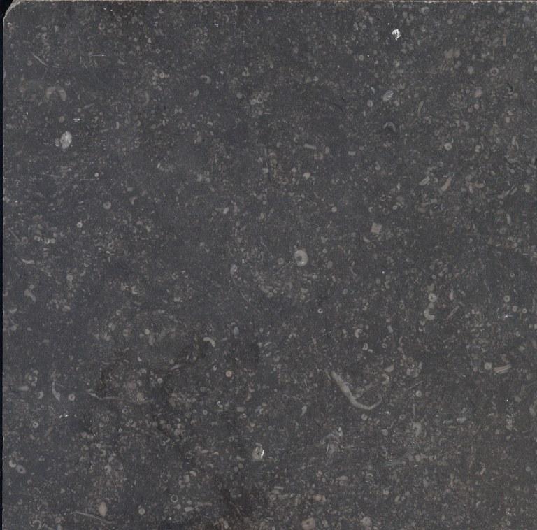 Petit Granit M511