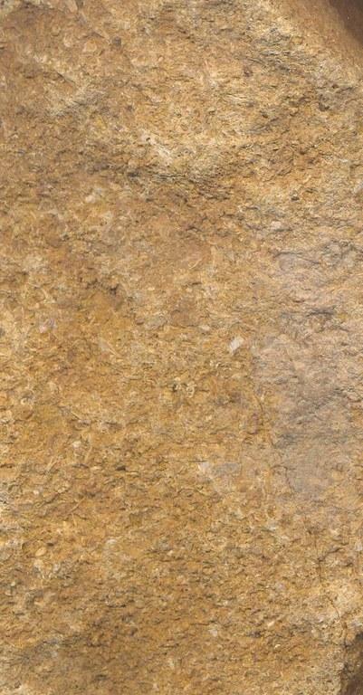 Monts d'Or Pierre de M1158