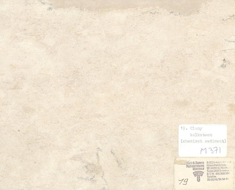 Cluny M371