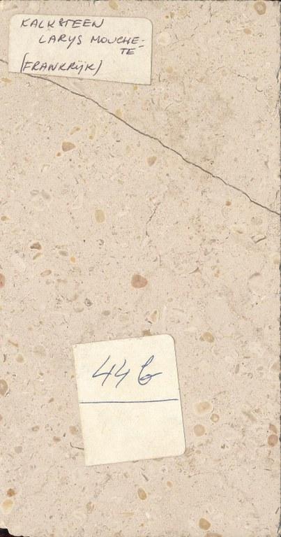 Larrys Moucheté M445