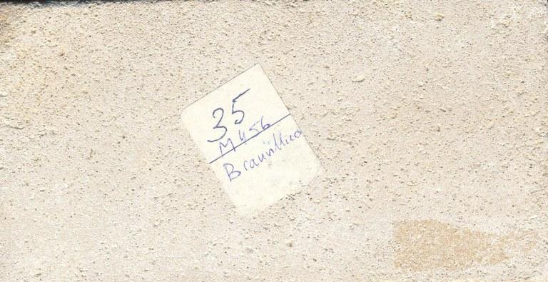 Brauvilliers M456