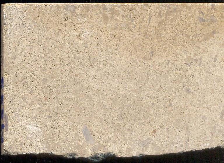 Vaurion Roche Claire M523