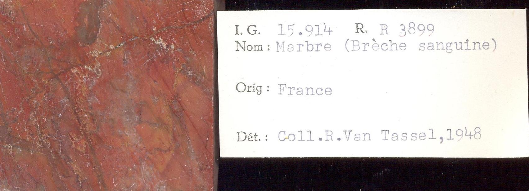 Brèche Sanguine RR3899