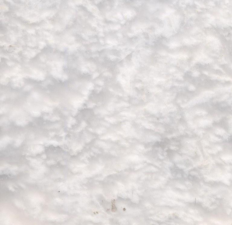 Perlega M1084