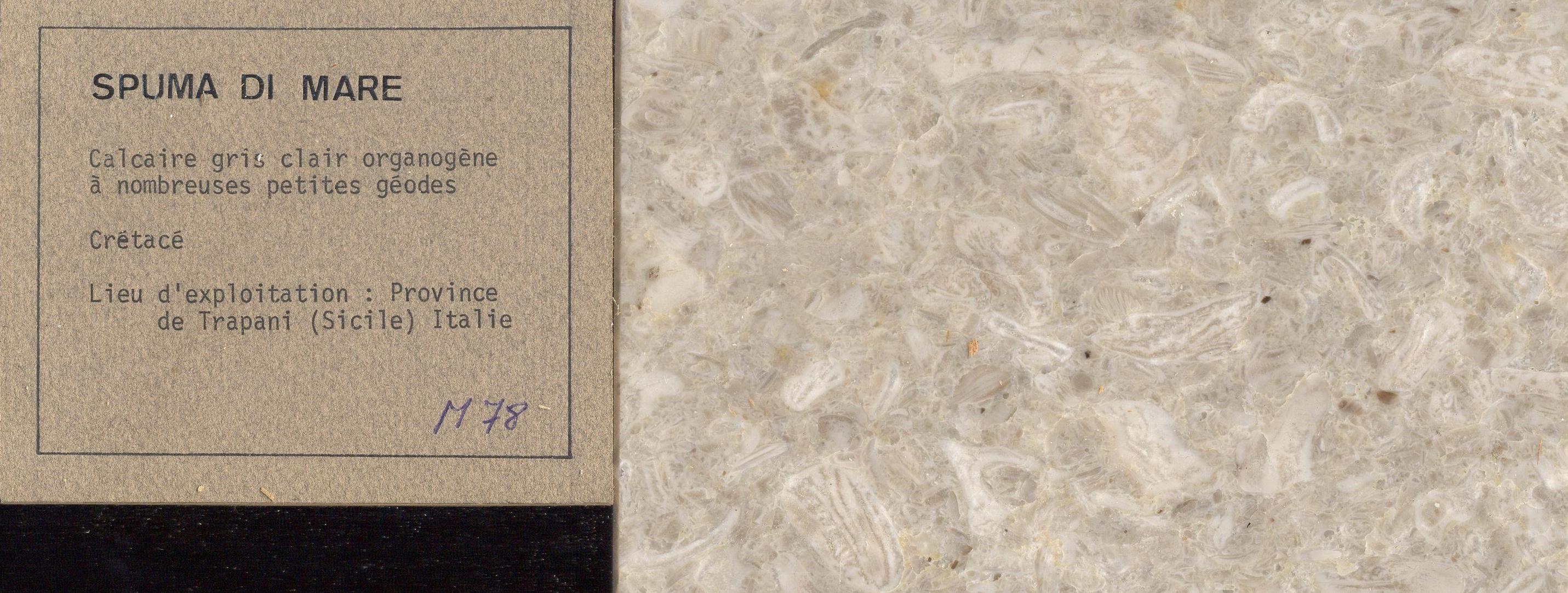 Spuma di Mare M078
