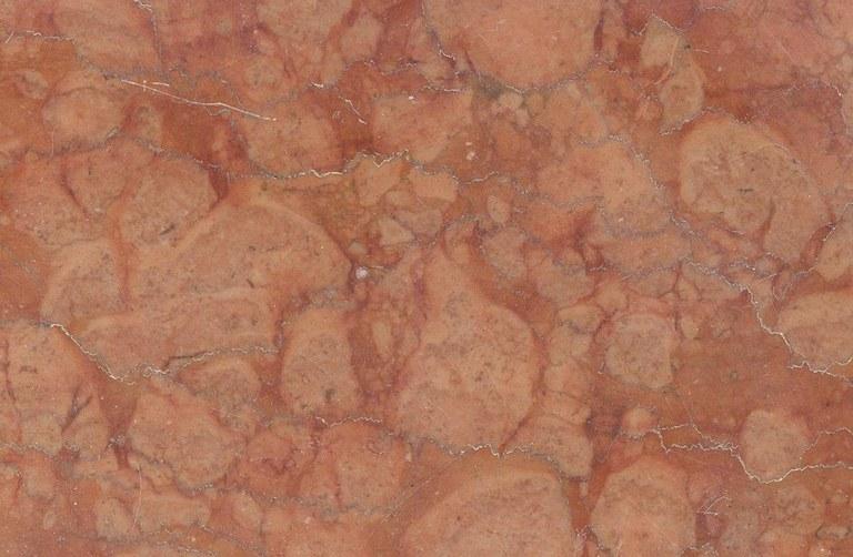 Rossa Magnaboschi Fiorito M1024