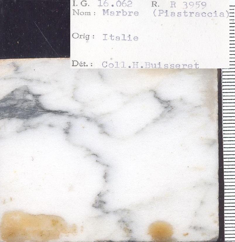 Piastraccia  RR3959