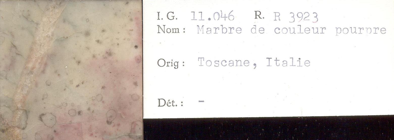 Toscane Pourpre RR3923