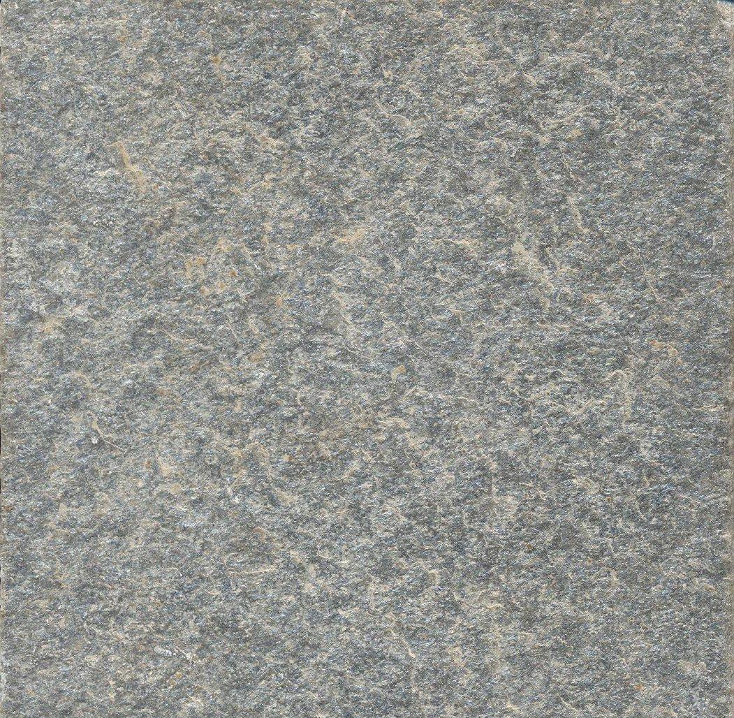Alta M488