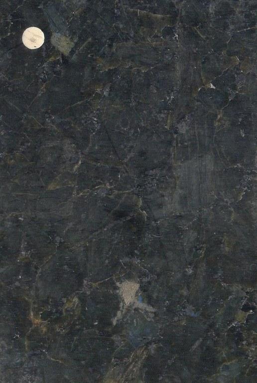 Labrador Fonce M847