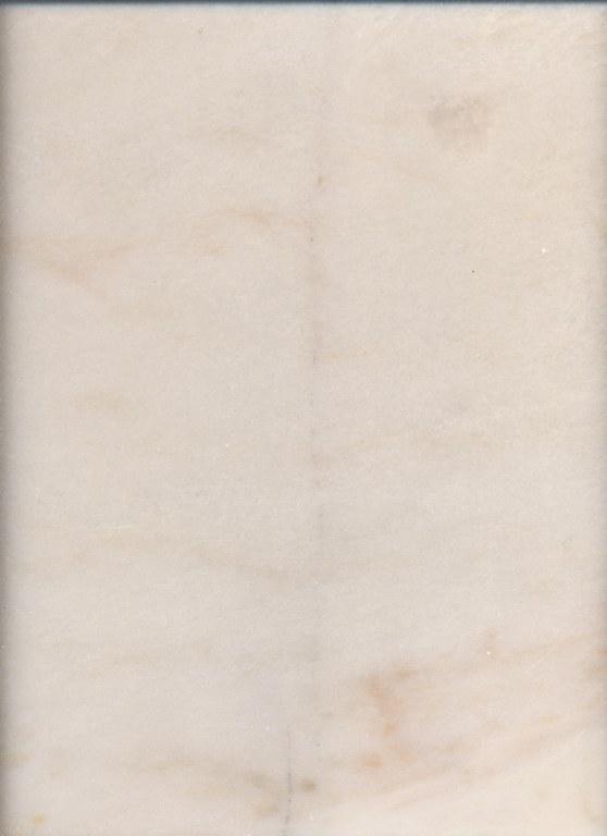 Rose Aurore M336