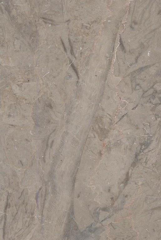 Granja M571