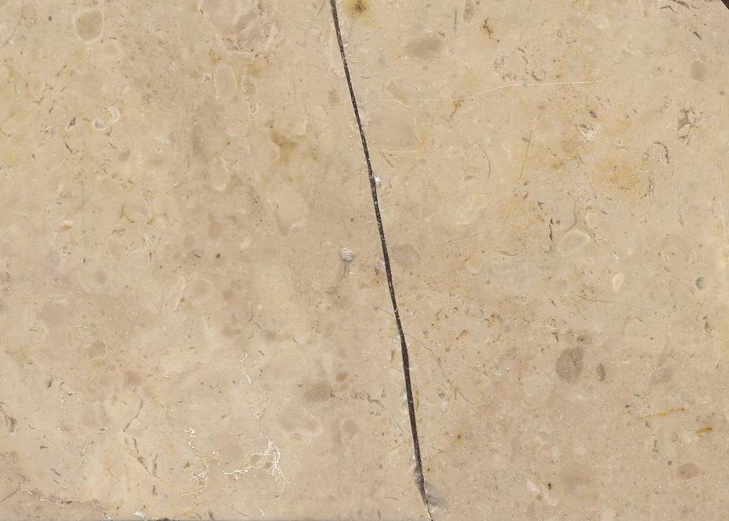 Lioz dos Moleanos M573