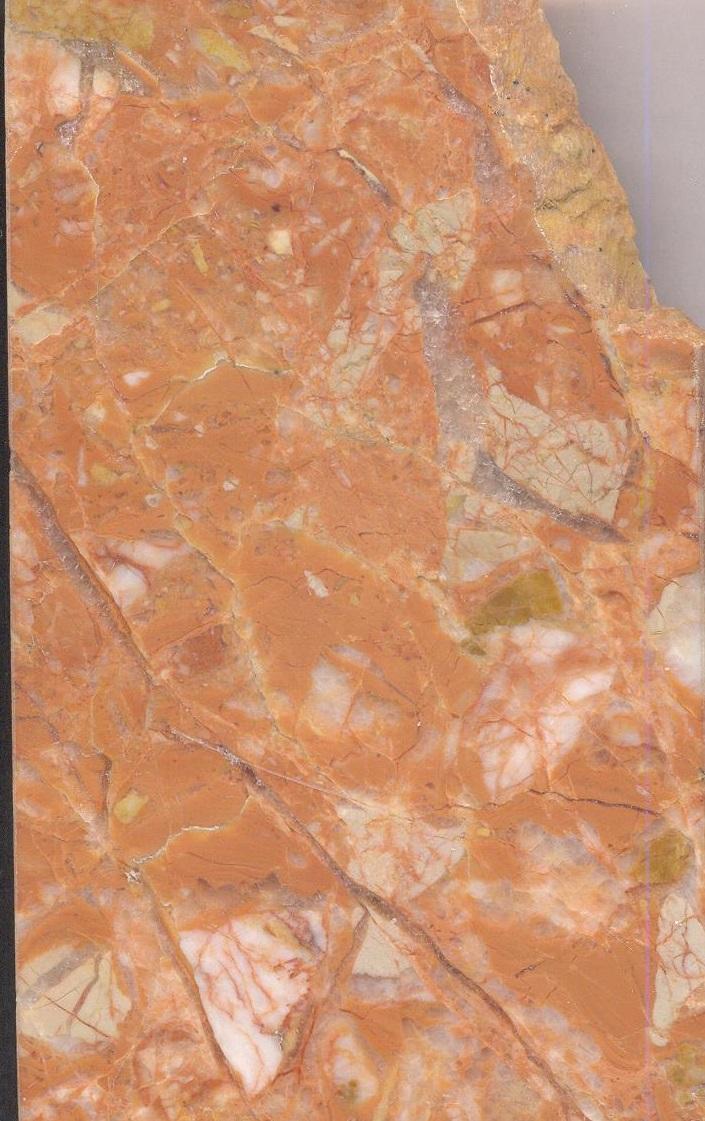Cesina M870