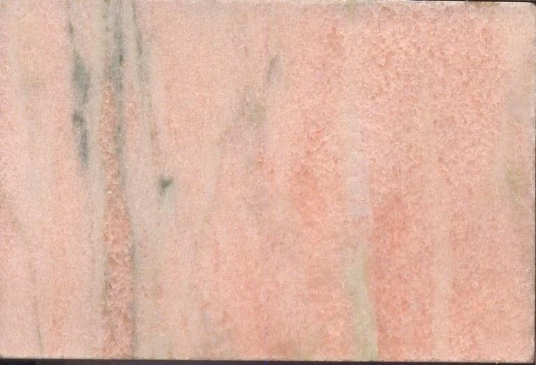 Rosa Domonte M872