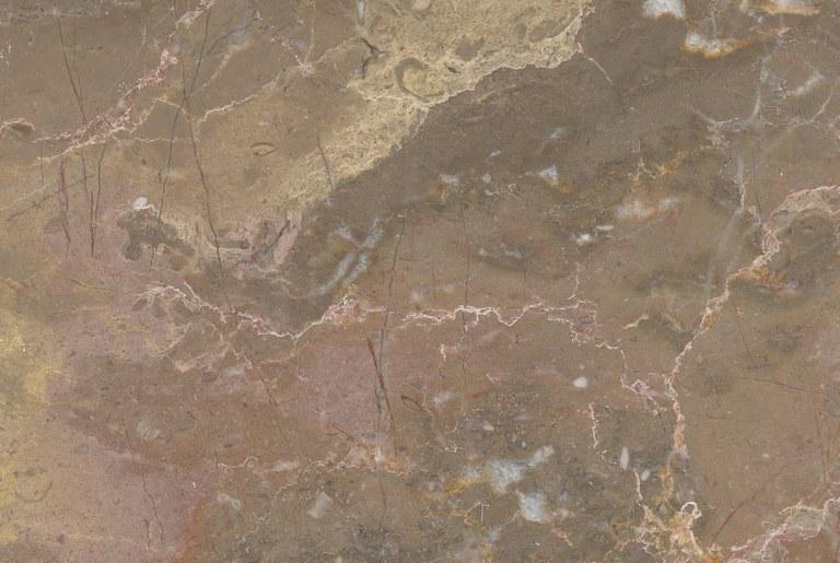 Brecha Tavira M980