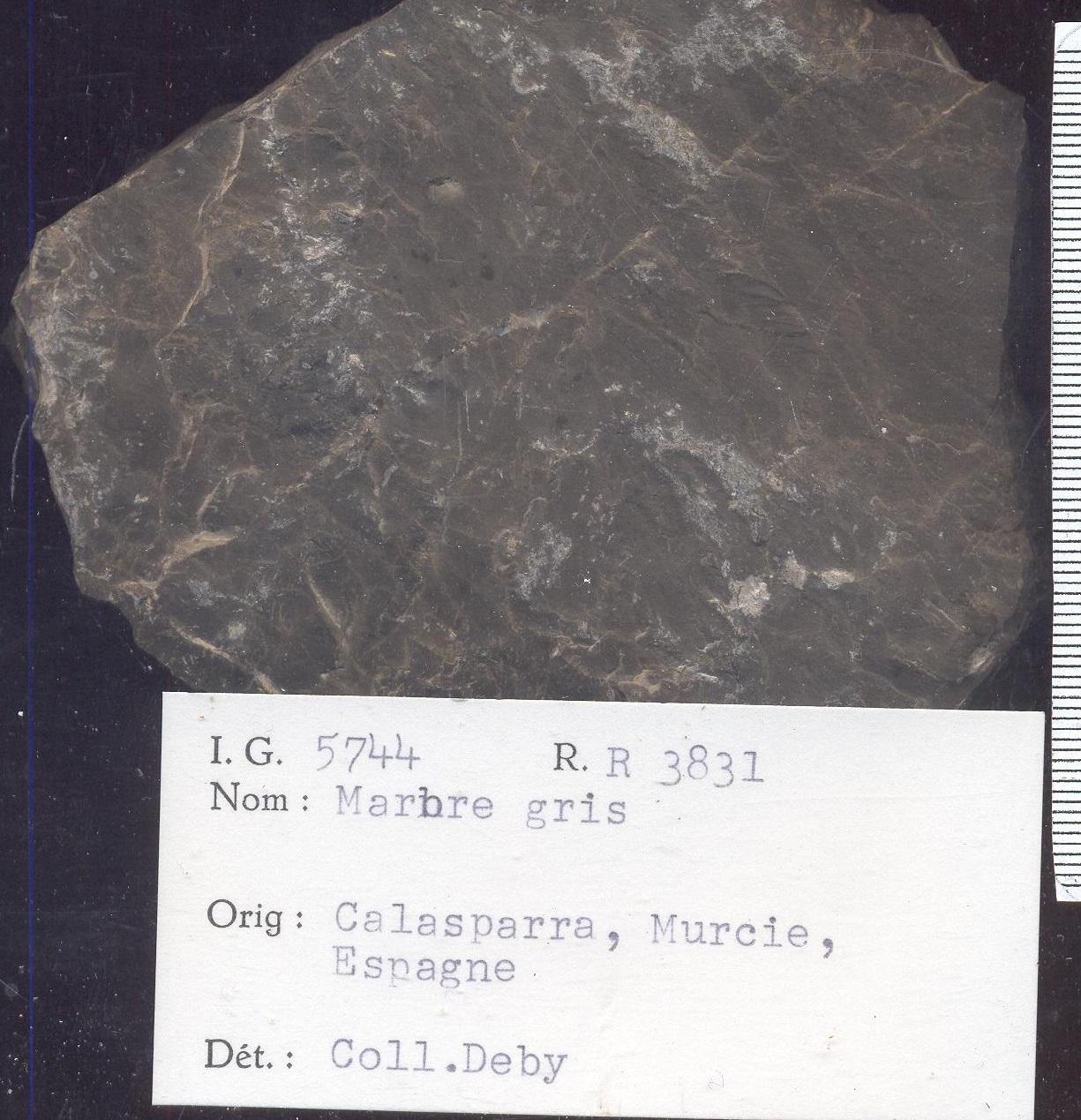 Calasparra Marbre gris RR3831