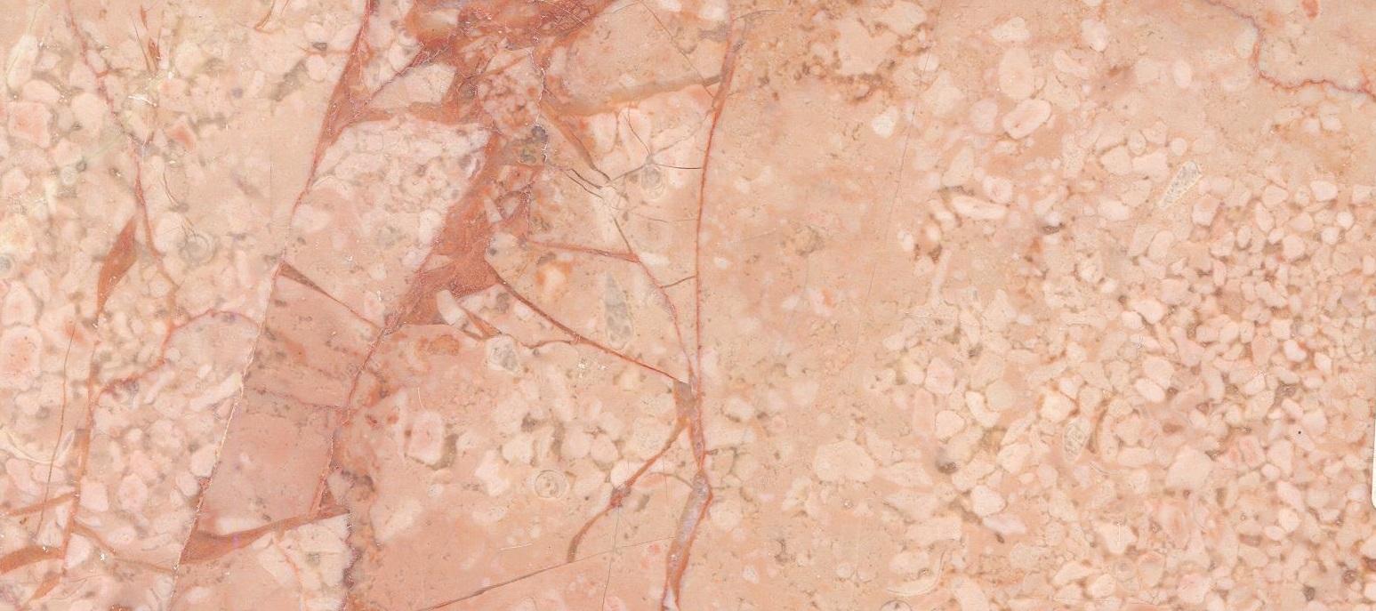 Hazar Pink Fossil M1167