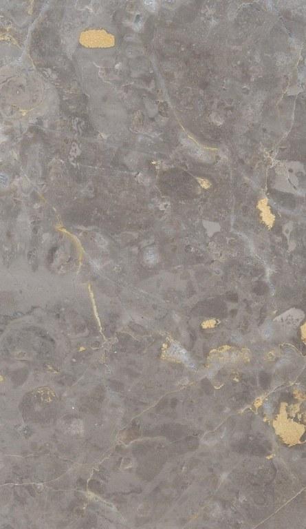 Antracite Gold M1197