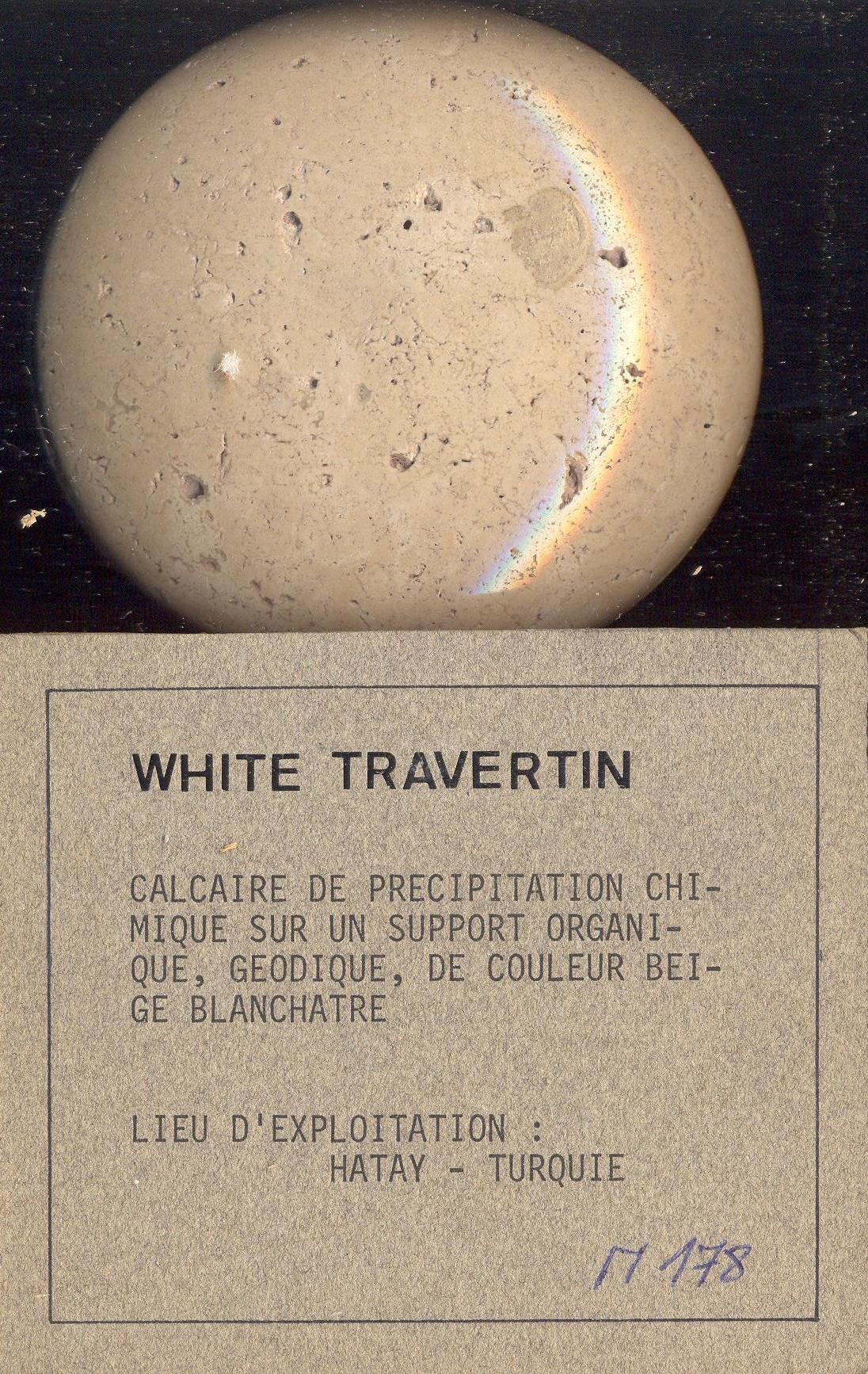 White Travertin M178