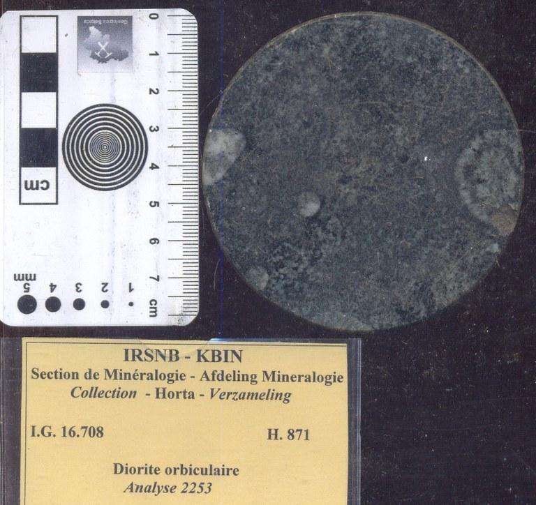 Diorite orbiculaire concentrisch afgezette kristallen H871