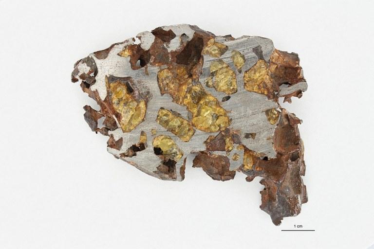 M79 Pallasite Chili 1 ZS PMax_1.jpg