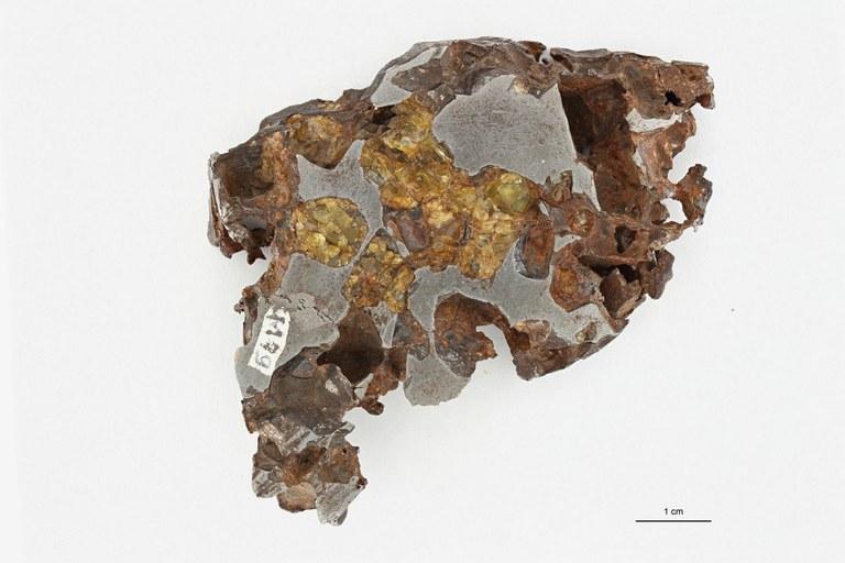 M79 Pallasite Chili 2 ZS PMax_1.jpg