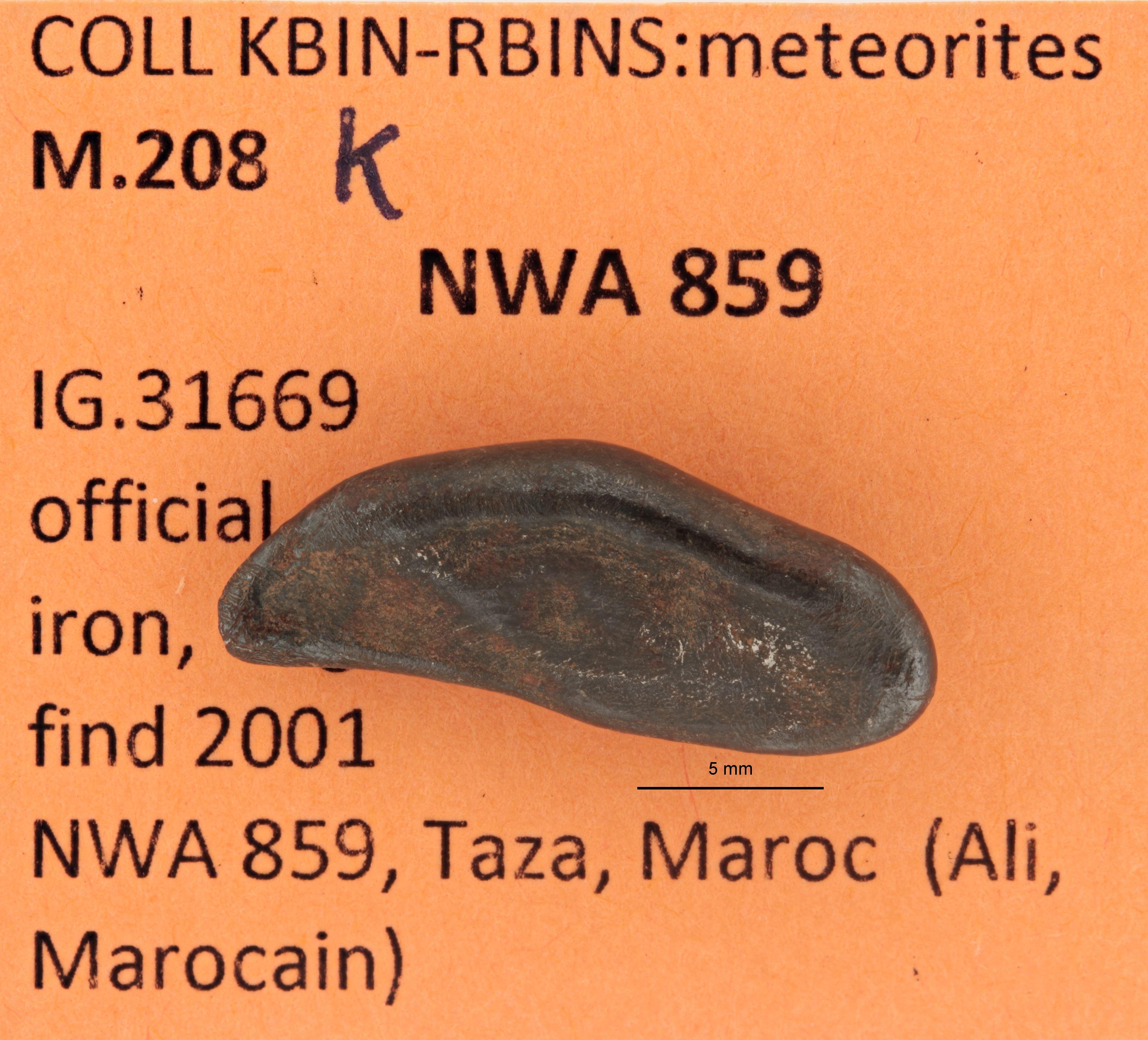 M208K ZS PMax.jpg