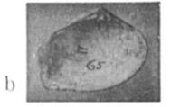 Fig.3b