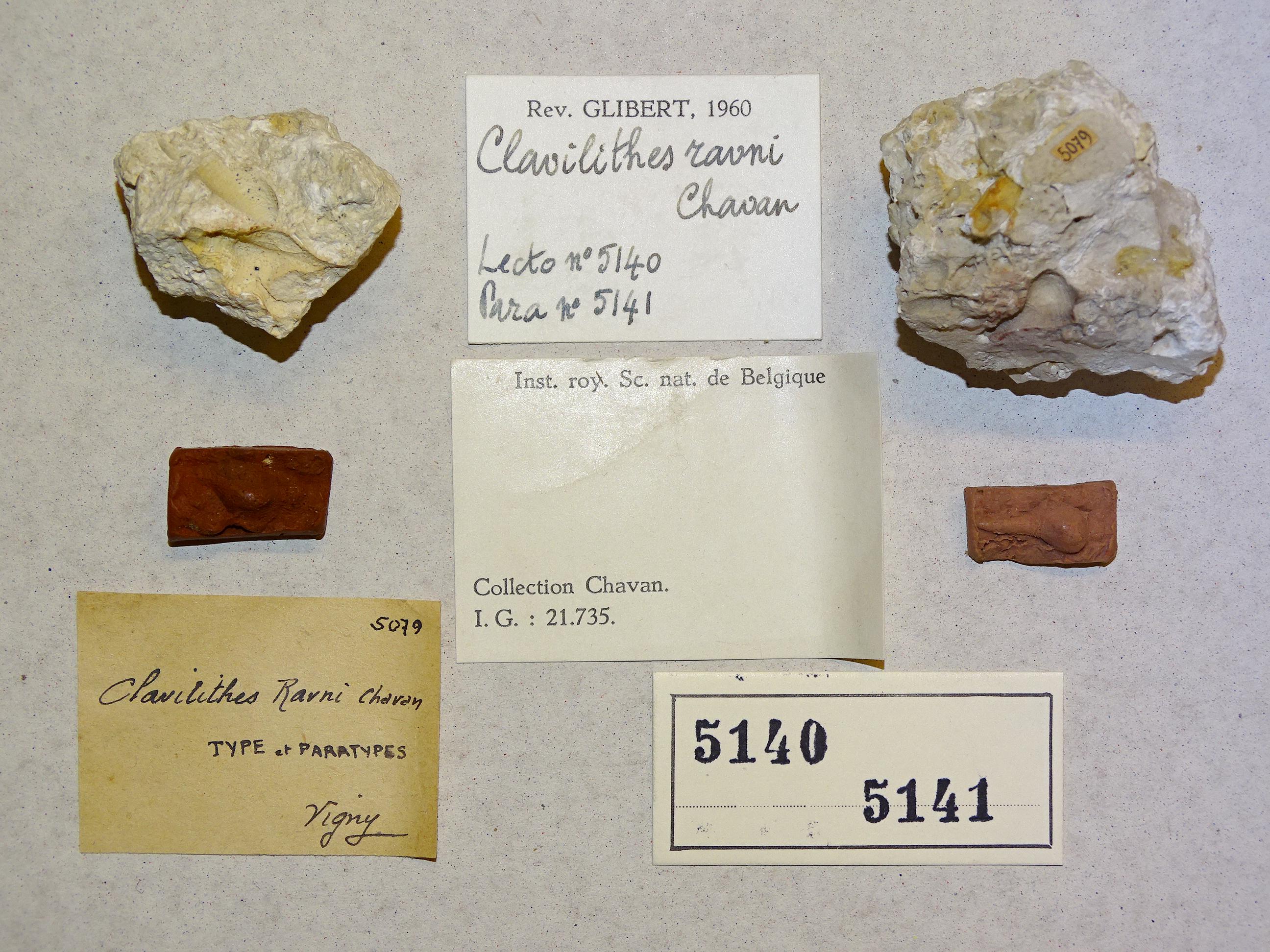 specimen & labels